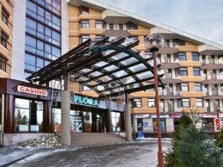 Flora main one-bedroom ski apartment 423, Borovets