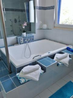 theres a huge bathroom with his n hers shower, twin sinks as well as double bath -