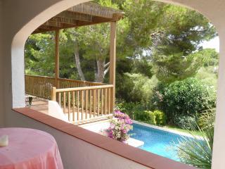 Pool, Garden, Big Terrace from bedroom terrace