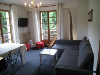 Appartement 3 pieces, renove 2014, a Megeve,