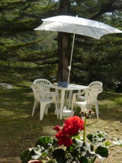 In giardino, il tavolo, sedie, e natura