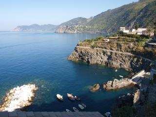 The little port of Manarola and the coast of Cinque Terre