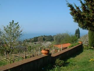 Villa con giardino vista mare/Cottage with garden, Marina di Carrara