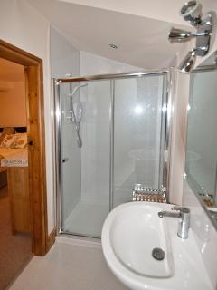 Spacious en-suite bathroom with generous shower, wash basin, WC and towel rail,featur velux window