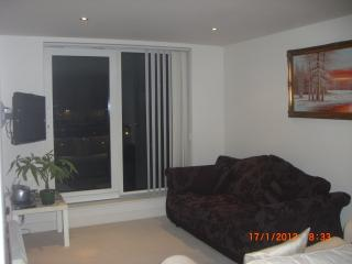 Imperial Wharf 2 Bed Apartment, Londres