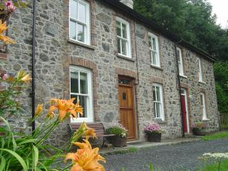 Bronfelin Holiday Cottage, Llanwrtyd Wells