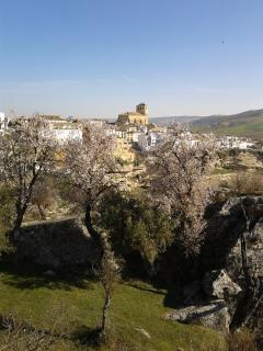 Alhama from the Gorge