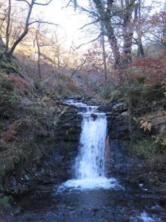Merfyn's Walk