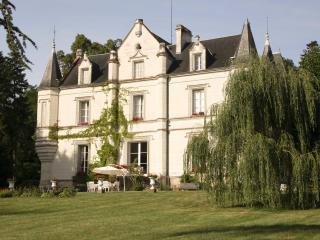 Charming Chateau to Relax in Style and Space, Saint-Jean-Saint-Germain