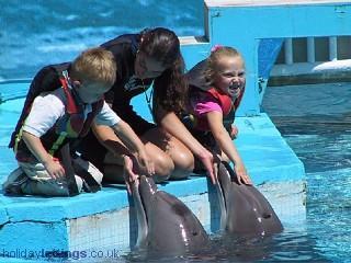Parque de atracciones Zoomarine Sealife - descuentos disponibles en nuestra oficina
