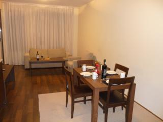 Lounge and dining Area leading to balcony