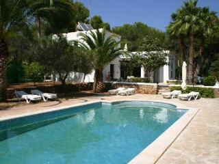 Amazing Villa close to Dalies, Sant Carles de Peralta