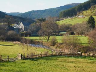 Local views of Penmachno