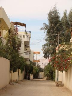 View from the Nile street into our street