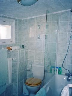 Modern Bathroom including a Bidet
