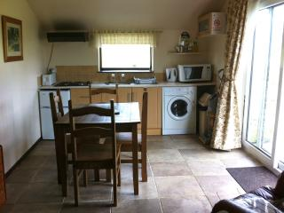 The Kitchen With small fridge freezer/Washer/and Combi/microwave/and slow cooker