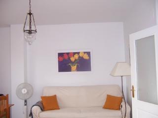 salón 20 m2 amplio ventanal a la calle y puertas correderas a la terraza