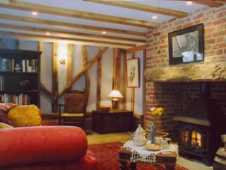 Main living area, sofa's around woodburner