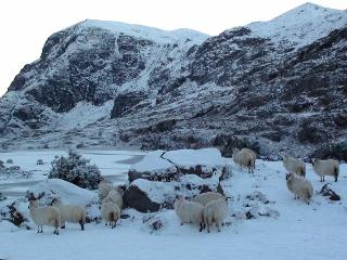Gap of Dunloe covered in snow