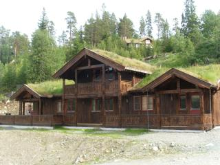 Highend mountain cabin. 30 % discount on currency