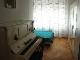 Spacious and comfortable apartment, Belgrade