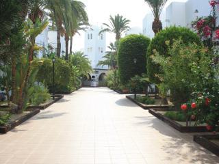 Paseo de palmeras
