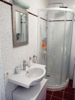 The bathroom with sink and shower unit