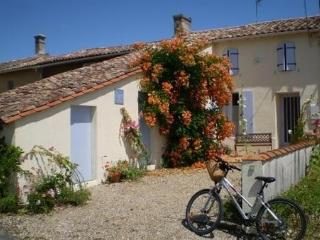 Holiday cottage in S.W. France