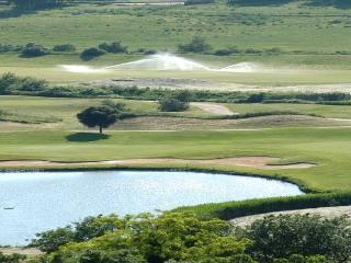 Fabio Ferri's Golf Penthouse