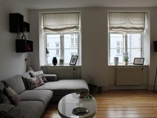Charming Copenhagen apartment close to Citadel