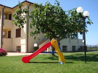 I PAPAVERI  'ConchigliaB ', San Vincenzo