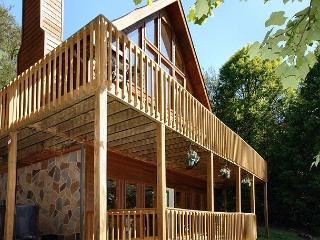 Gatlinburg Cabin in the mountains  EAGLE'S VIEW 516