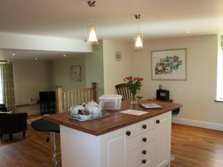 The spacious kitchen leading to the family tv room