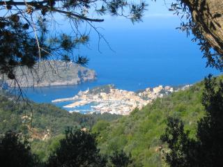 Port Soller from a nearby hill