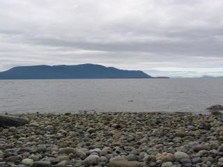 WHALE WATCHER, Lummi Island