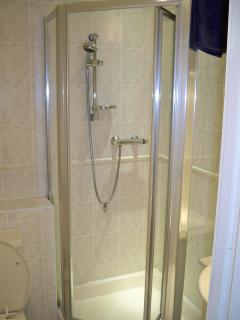 Downstairs shower/toilet