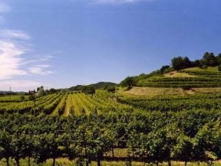 AGRITURISMO  TENUTA LA PERGOLA, Cisterna d'Asti