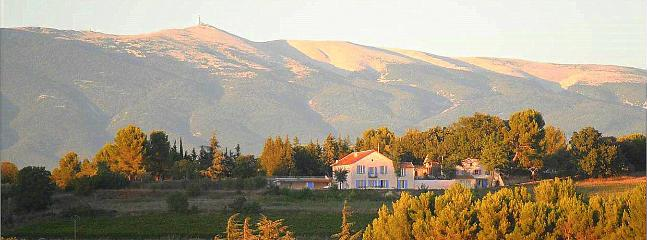 Our house on the hillside with the Mont Ventoux at the back
