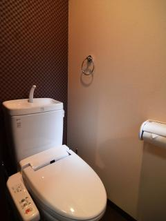 not a roomy toilet but functional, heated toilet seat and warm bidet functions