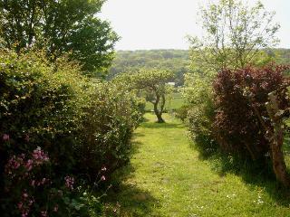 View down the garden to Tennyson Down