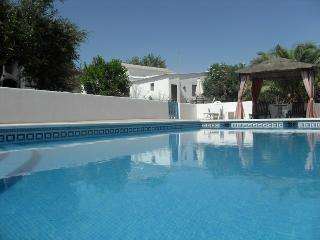 Secluded 3 bed Villa with private pool in rural Andalucia