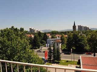 Central Apartment Domen TourAs, Ljubljana
