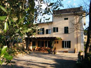 'L'OLIVO' country house  Antria  Arezzo Tuscany