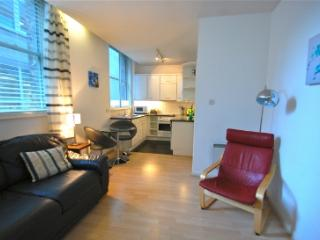 1 bed apartment St Pauls/Blackfriars with WiFi!