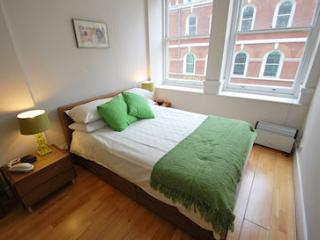 Spacious 1 bed apartment St Pauls/Fleet Street