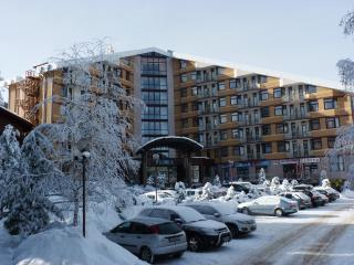 Flora main ski apartment with balcony 514