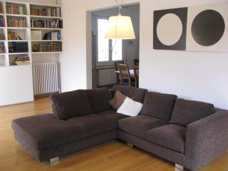 Bright elegant big apartment, Bologne