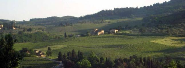 Our Neighbours on the other side of the hill of Ancora del Chianti Eco - Friendly B&B in Tuscany