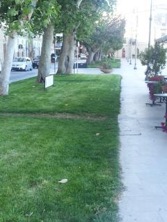 Prato verde nella Piazza principale adiacente al B&B