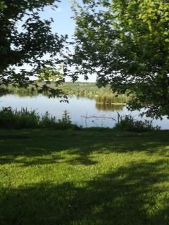 The wildlife lake, with relaxation areas for our guests to unwind enjoy nature and the views.